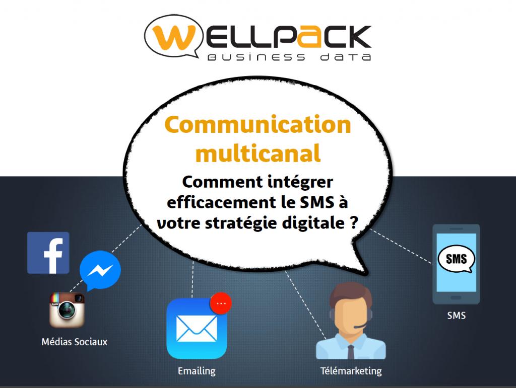 page de garde du livre blanc sur la communication multicanal avec les icônes de facebook, instagram, de l'emailing, du télémarketing et du sms.